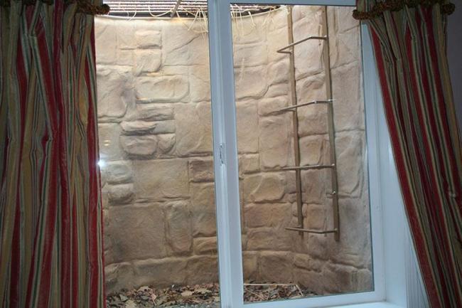 Basement egress window requirements custom integrated - Basement bedroom egress window requirements ...