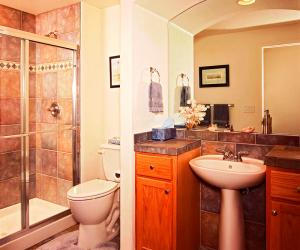 Basement Bathroom with Architectural Detail