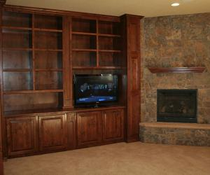 Media Area with Fireplace